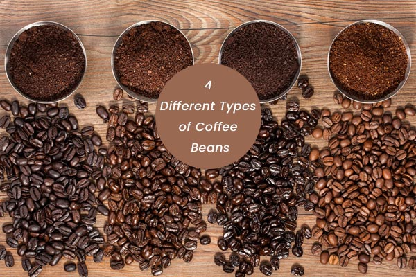 Different-Types-of-Coffee-Beans